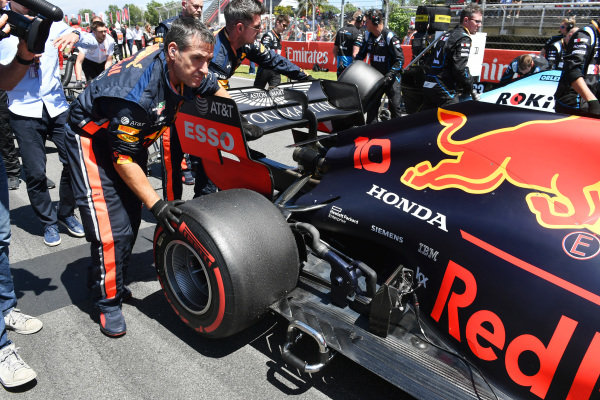 Pierre Gasly, Red Bull Racing RB15, arrives on the grid