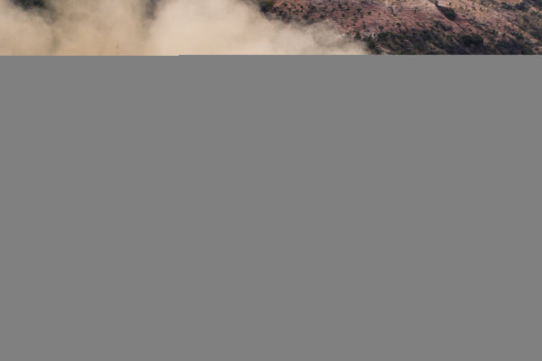 2016 FIA World Rally Championship, Round 03, Rally Mexico, March 3-6, 2016 Lorenzo Bertuelli, Ford, action Worldwide Copyright: McKlein/LAT