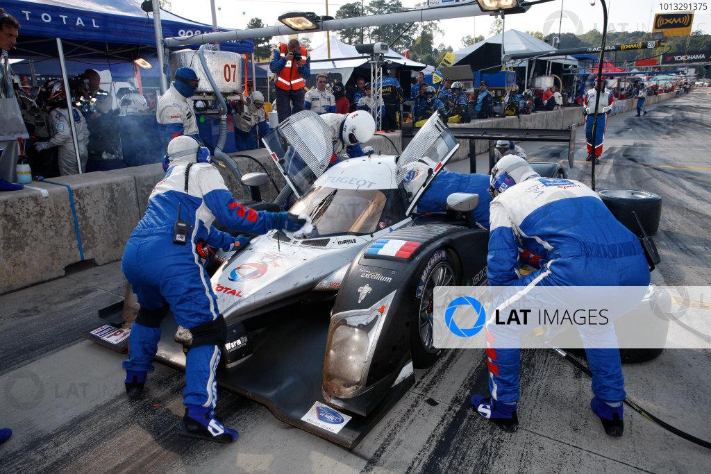 2008 ALMS Petit Le Mans