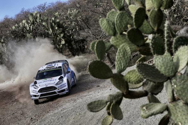Ott Tanak (EST) / Raigo Molder (EST) Ford Fiesta RS WRC at World Rally Championship, Rd3, Rally Mexico, Preparations and Shakedown, Leon, Mexico, 5 March 2015.