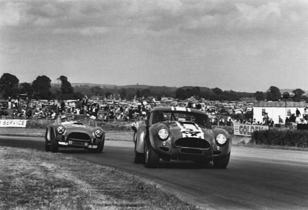 Goodwood, W Sussex, England. 29th August 1964.Bob Olthoff (Shelby Cobra Willment Coupe), 5th position leads Roy Salvadori (Shelby Cobra roadster), retired, action.World Copyright: LAT Photographic.Ref: L64 - 295 - 7.