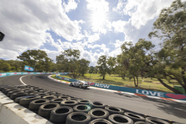 Andre Heimartner, Kelly Grove Racing, Ford Mustang